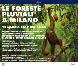 Le Foreste Pluviali a Milano