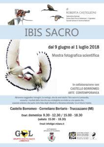 Ibis Sacro – Mostra Fotografica e Scientifica