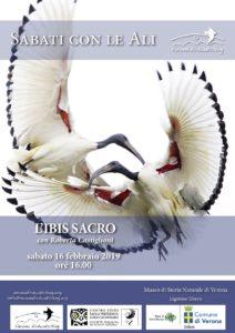 L'Ibis Sacro – con Roberta Castiglioni
