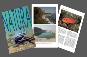 Desert cichlids: tough fishes for harsh habitats. Natura 109-2